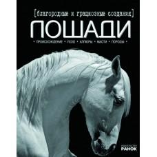 Благородные и грациозные создания-лошади