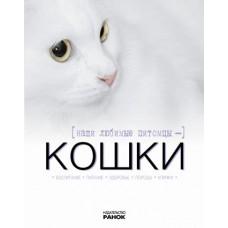 Наши любимые питомцы-кошки